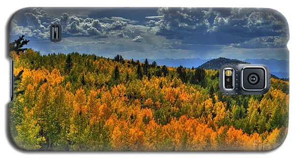 Autumn In Colorado Galaxy S5 Case