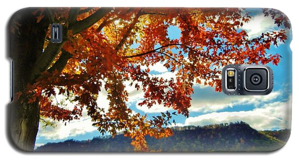 Autumn In Minnesota Galaxy S5 Case
