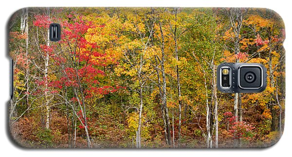 Autumn In Muskoka Galaxy S5 Case by Les Palenik