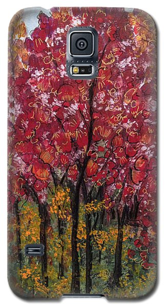 Autumn In Nashville Galaxy S5 Case by Holly Carmichael