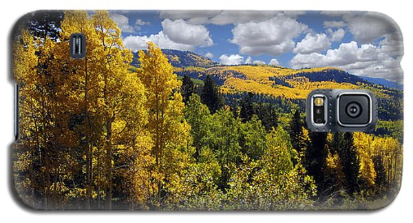 Autumn In New Mexico Galaxy S5 Case