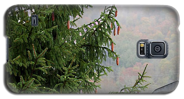 Galaxy S5 Case featuring the photograph Autumn In North Carolina by Linda Cox
