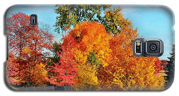 Autumn In The Air Galaxy S5 Case by Judy Palkimas