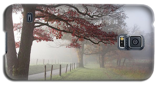 Autumn In The Cove IIi Galaxy S5 Case by Douglas Stucky