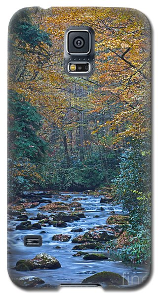 Autumn In The Great Smoky Mountains Vi Galaxy S5 Case