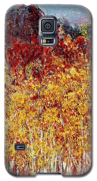 Autumn In The Pioneer Valley Galaxy S5 Case by Regina Valluzzi