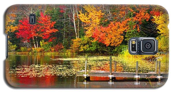 Autumn In Vt Galaxy S5 Case