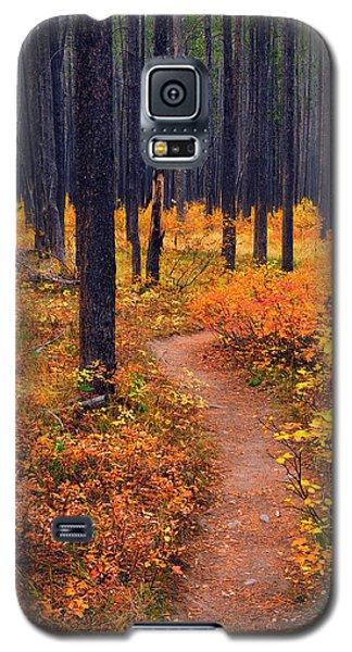 Galaxy S5 Case featuring the photograph Autumn In Yellowstone by Raymond Salani III