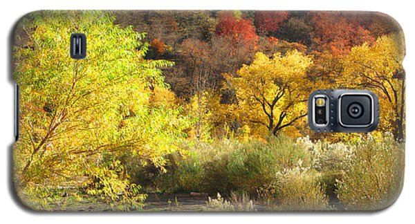 Galaxy S5 Case featuring the photograph Autumn In Zion by Alan Socolik