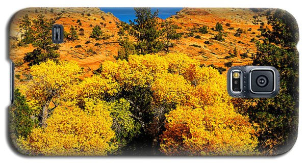 Galaxy S5 Case featuring the photograph Autumn In Zion by Greg Norrell