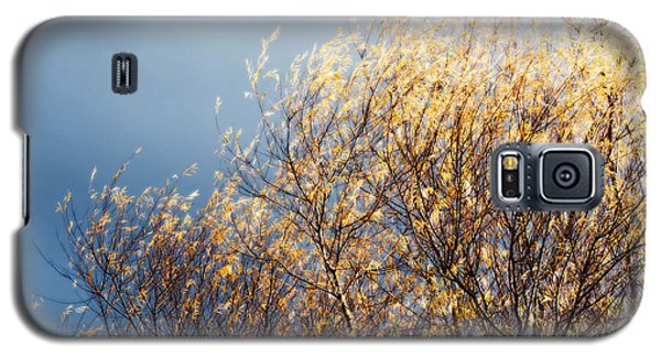 Galaxy S5 Case featuring the photograph Autumn Is Leaving by Gwyn Newcombe