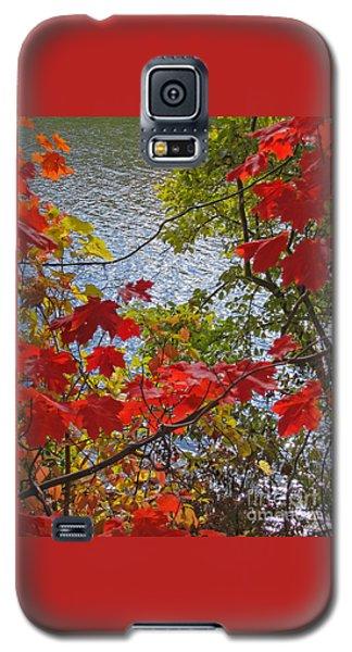 Autumn Lake Galaxy S5 Case by Ann Horn
