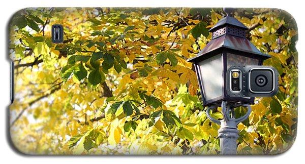Autumn Lamp Post Galaxy S5 Case