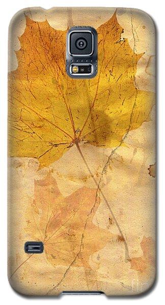 Autumn Leaf In Grunge Style Galaxy S5 Case by Michal Boubin
