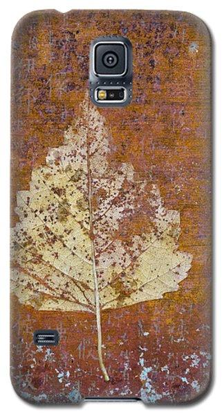 Autumn Leaf On Copper Galaxy S5 Case