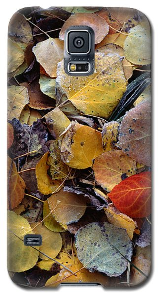 Autumn Leaf Puzzle Galaxy S5 Case