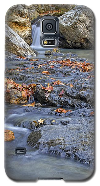 Autumn Leaves At Little Missouri Falls - Arkansas - Waterfall Galaxy S5 Case