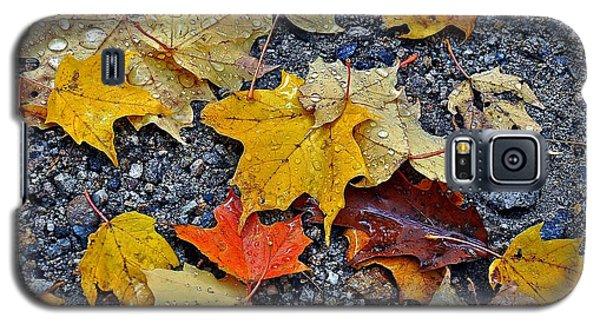 Autumn Leaves In Rain Galaxy S5 Case