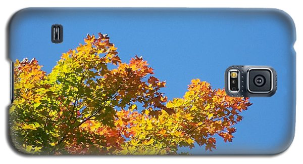 Galaxy S5 Case featuring the photograph Autumn Leaves by Jackie Mueller-Jones