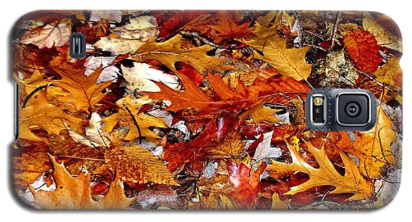Autumn Leaves On The Ground In New Hampshire - Bright Colors Galaxy S5 Case
