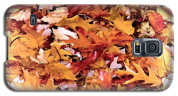 Autumn Leaves On The Ground In New Hampshire In Muted Colors Galaxy S5 Case