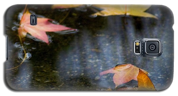 Autumn Leaves On Water Galaxy S5 Case
