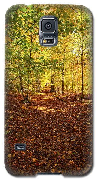 Autumn Leaves Pathway  Galaxy S5 Case