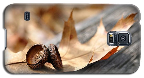 Autumn Leaves With Acorn Caps 002 Galaxy S5 Case by Todd Soderstrom