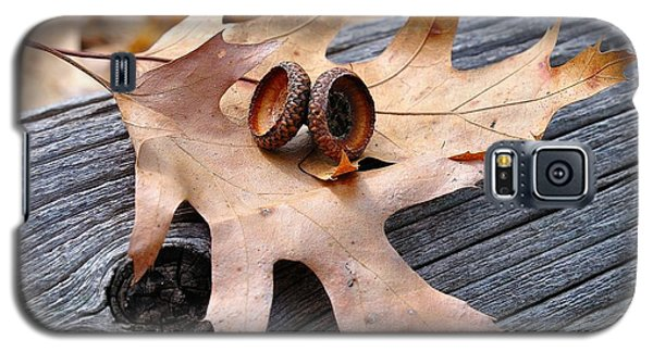 Autumn Leaves With Acorn Caps 003 Galaxy S5 Case by Todd Soderstrom