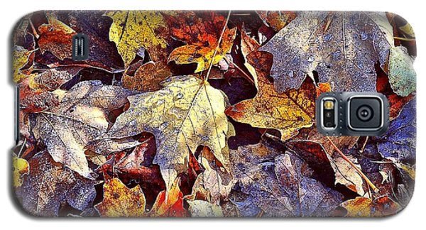 Autumn Leaves With Frost Galaxy S5 Case