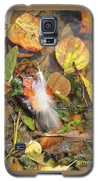Galaxy S5 Case featuring the photograph Autumn Leavings by Ann Horn