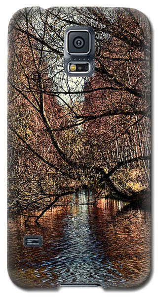 Autumn Light By Leif Sohlman Galaxy S5 Case