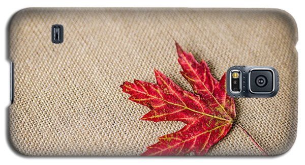 Galaxy S5 Case featuring the photograph Autumn by Mary Timman