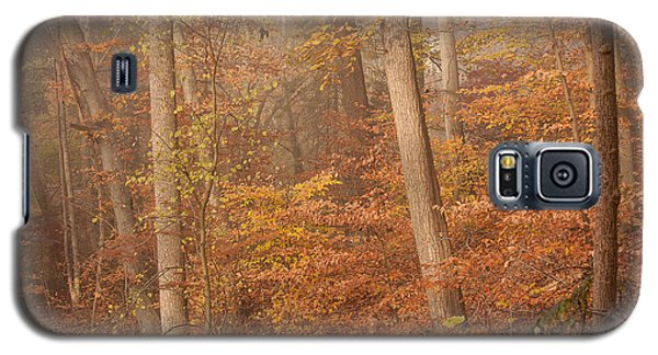 Galaxy S5 Case featuring the photograph Autumn Mist by Patrice Zinck