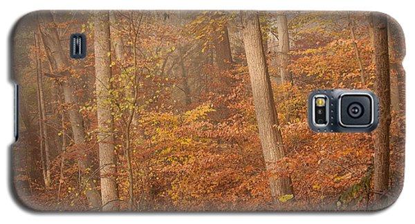 Autumn Mist Galaxy S5 Case