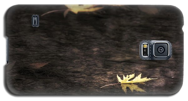 Autumn Mood - Fall - Leaves Galaxy S5 Case