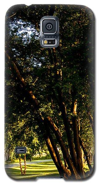 Autumn Morning Stroll Galaxy S5 Case