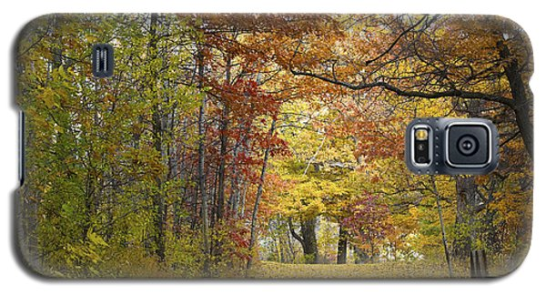 Autumn Nature Trail Galaxy S5 Case