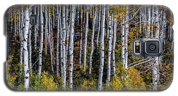 Galaxy S5 Case featuring the photograph Autumn On Mcclure Pass by Ken Smith