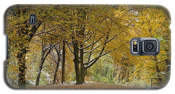 autumn on Moenchsberg in Salzburg Galaxy S5 Case by Rudi Prott