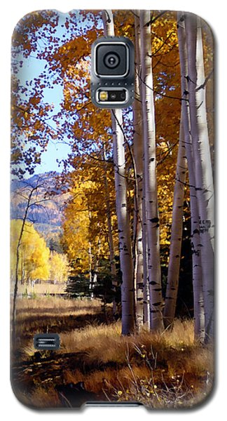 Autumn Paint Chama New Mexico Galaxy S5 Case