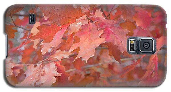 Autumn Paintbrush Galaxy S5 Case