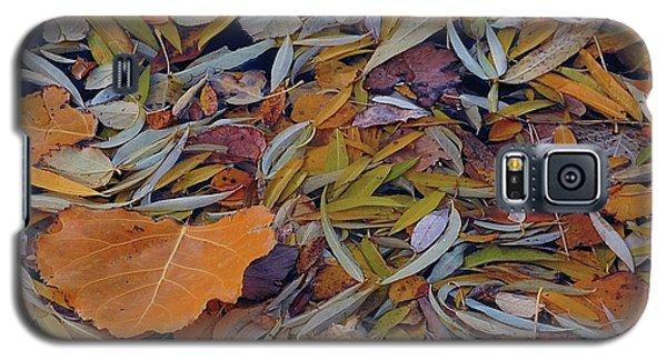 Autumn Palette Galaxy S5 Case