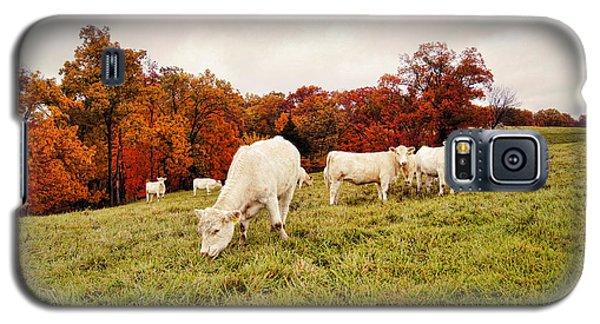 Autumn Pastures Galaxy S5 Case