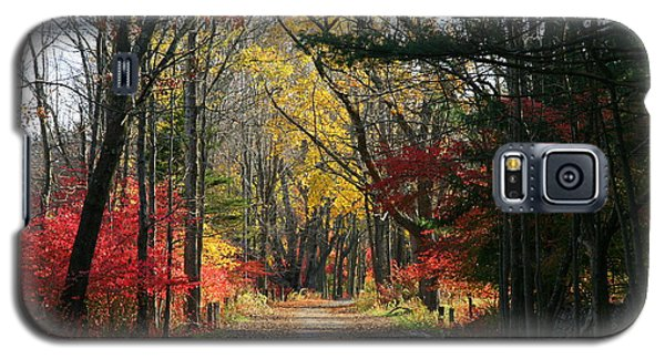 Autumn Paths    No.2 Galaxy S5 Case