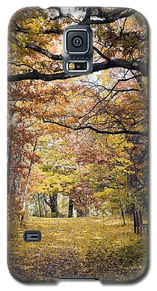Autumn Pedestrian Path Galaxy S5 Case