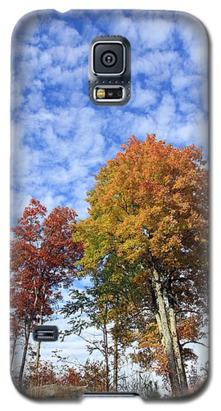 Autumn Perfection Galaxy S5 Case