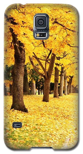 Autumn Perspective Galaxy S5 Case