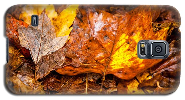 Autumn Pile Galaxy S5 Case by Melinda Ledsome