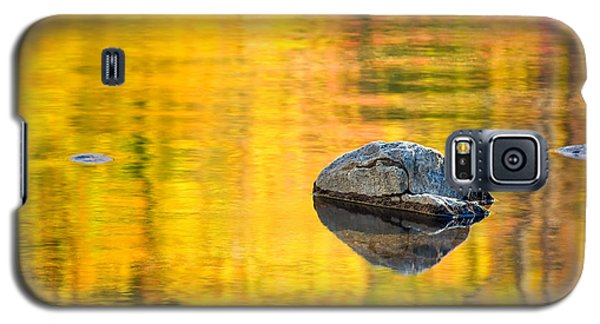 Autumn Reflected Galaxy S5 Case by Joan Herwig